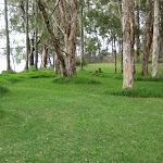 Nice green areas to run around