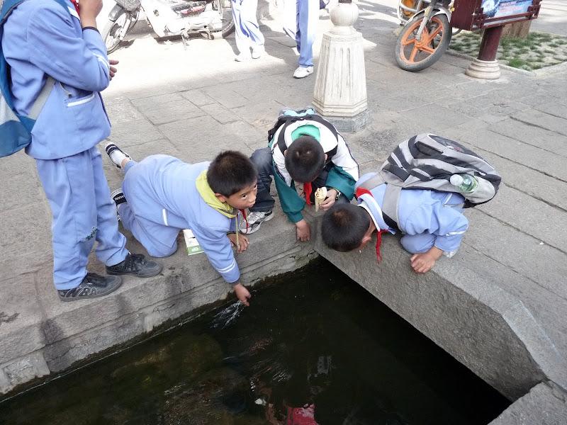 Chine. Yunnan Dali .En vélo vers le lac ERHAI - P1170799.JPG
