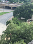 A Depository view of the Grassy Knoll
