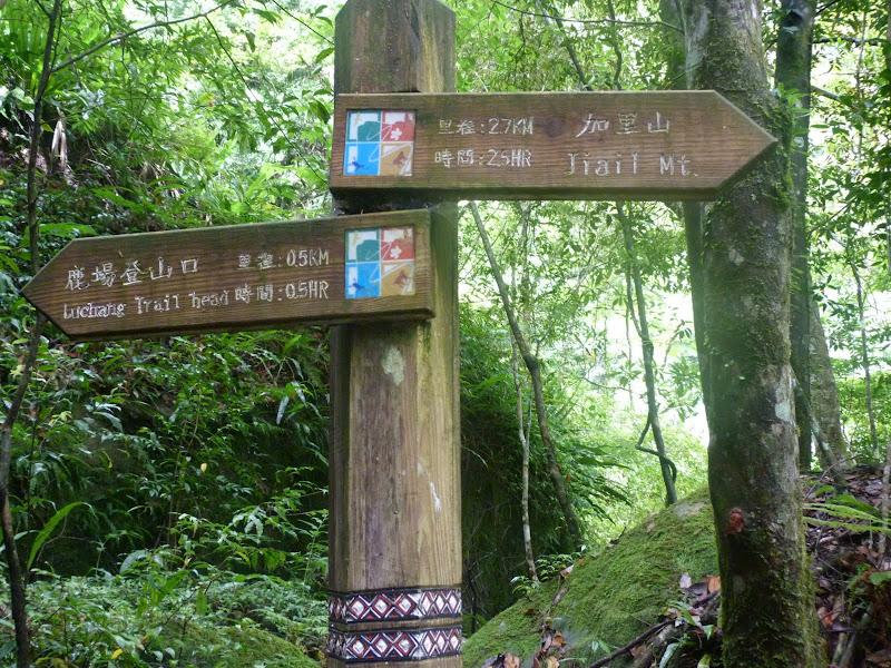 Petite randonnée au sud de Taufen, dans la région de Miaoli - P1330593.JPG