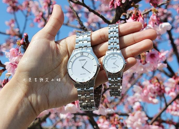 1 星辰 CITIZEN AR0070-51A EG3220-58A 對錶