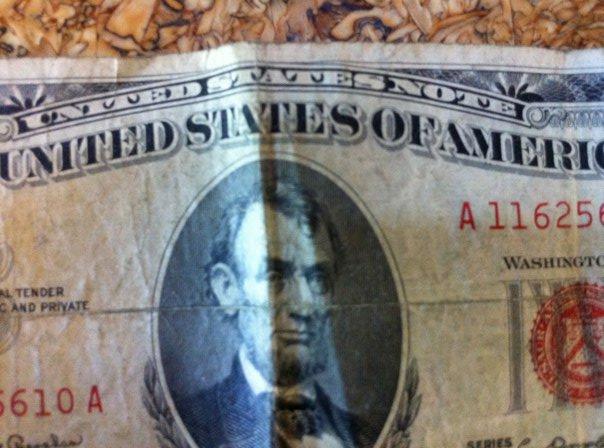 Ross Jeffries Pua Expert On Dollar Portrait, Ross Jeffries