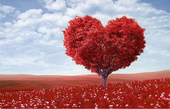 Tình yêu và Valentine