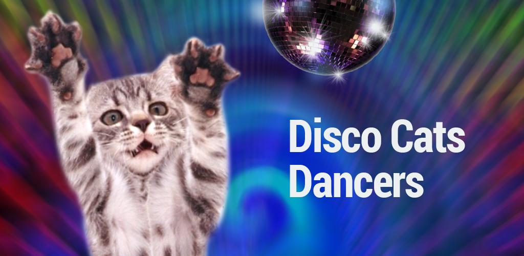 disco cats dancers 1 1 apk download com freshmint dancingcat apk free