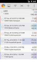Screenshot of Budget Blitz Pro