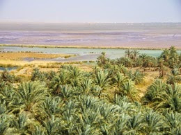 Siwa Location