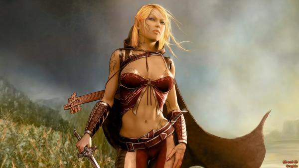 Elven Knight, Warriors