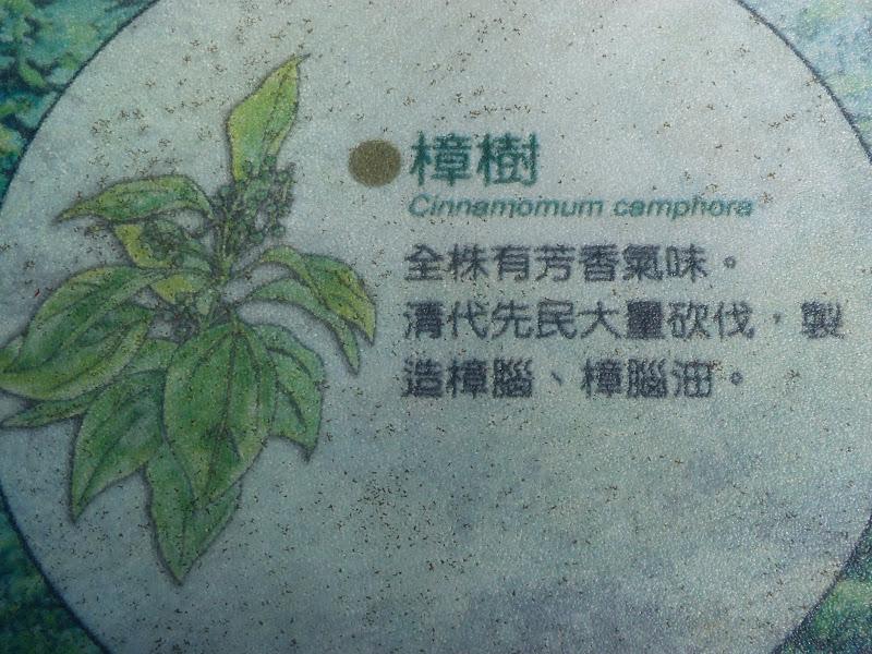TAIWAN Chia yi, Taichung et quelque part ? au  au sud de Taipei - P1000314.JPG