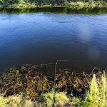 20140719_Fishing_Lysyn_039.jpg
