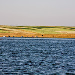 20140706_Fishing_Prylbychi_071.jpg
