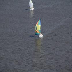 Dauphin Island Race 2013 066