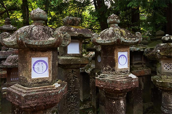Nara31.jpg