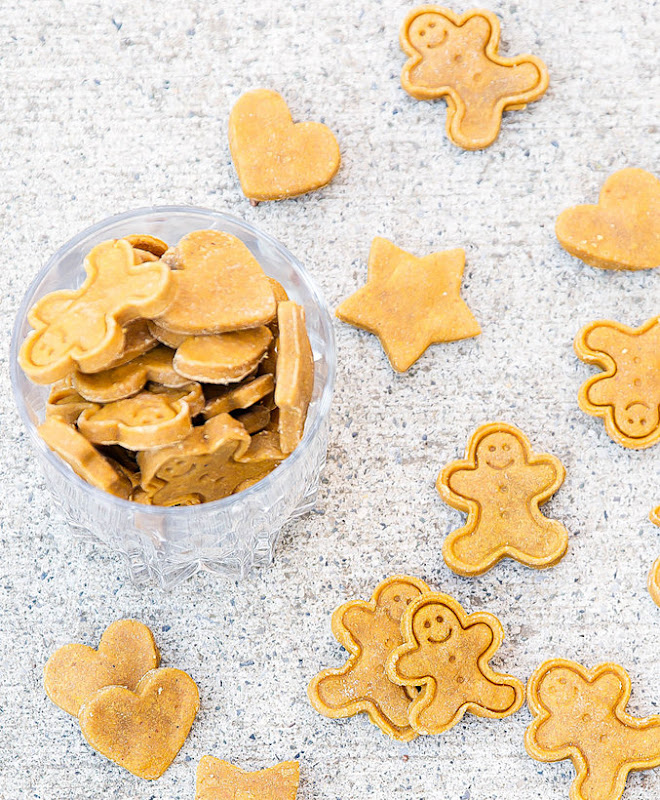 overhead photo of dog treats in a container with others scattered around