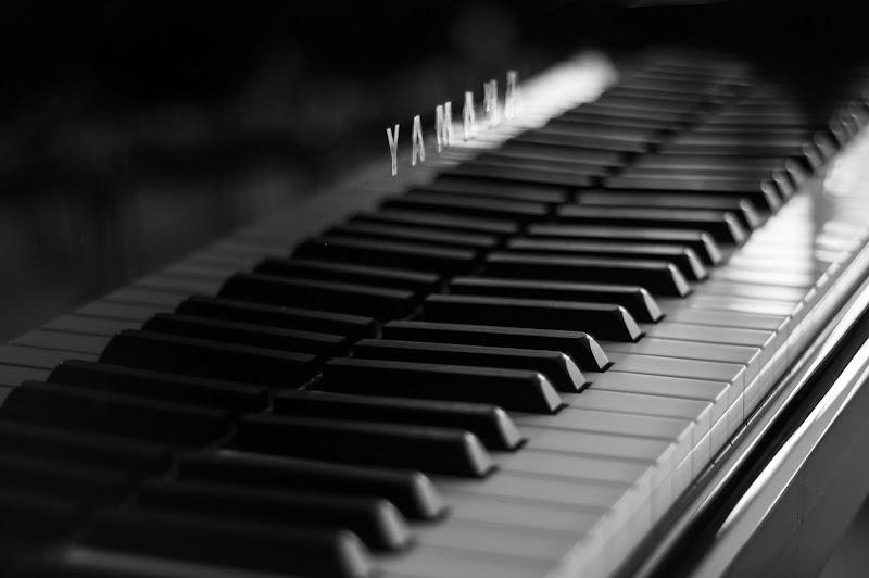 Tasti neri su note bianche di Davide Alba Albanese