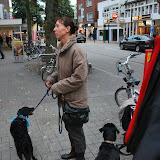 KNON-honden in Emmen - DSC_0787.JPG
