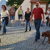 On Tour in Tirschenreuth: 30. Juni 2015 - DSC_0059.JPG