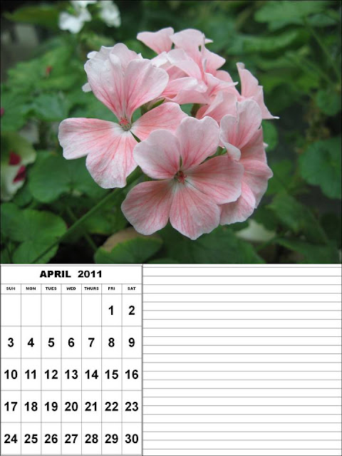 april 2011 calendar printable with. april 2011 calendar printable with. 2011 calendar printable april.