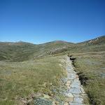 Main Range track (267191)