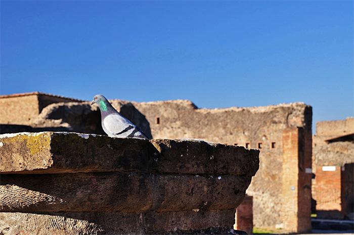 Pompeii15.JPG