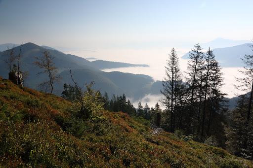 Oravská kotlina zo Suchého vrchu
