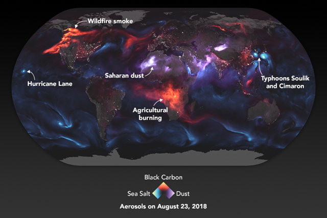 This visualization highlights Goddard Earth Observing System Forward Processing (GEOS FP) model output for aerosols on 23 August 2018. On this day, huge plumes of smoke drifted over North America and Africa, three different tropical cyclones churned in the Pacific Ocean, and large clouds of dust blew over deserts in Africa and Asia. The storms are visible within giant swirls of sea salt aerosol (blue), which winds loft into the air as part of sea spray. Black carbon particles (red) are among the particles emitted by fires; vehicle and factory emissions are another common source. Particles the model classified as dust are shown in purple. The visualization includes a layer of night light data collected by the day-night band of the Visible Infrared Imaging Radiometer Suite (VIIRS) on Suomi NPP that shows the locations of towns and cities. Graphic: Joshua Stevens / NASA Earth Observatory