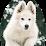 Educateur canin Capcanin's profile photo