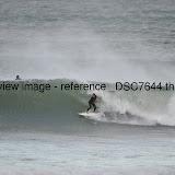 _DSC7644.thumb.jpg