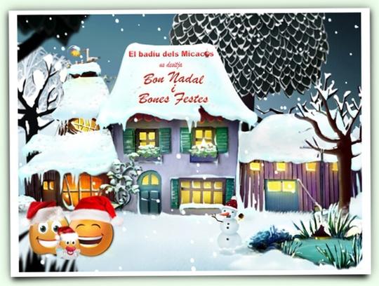Felicitació Nadals 2012