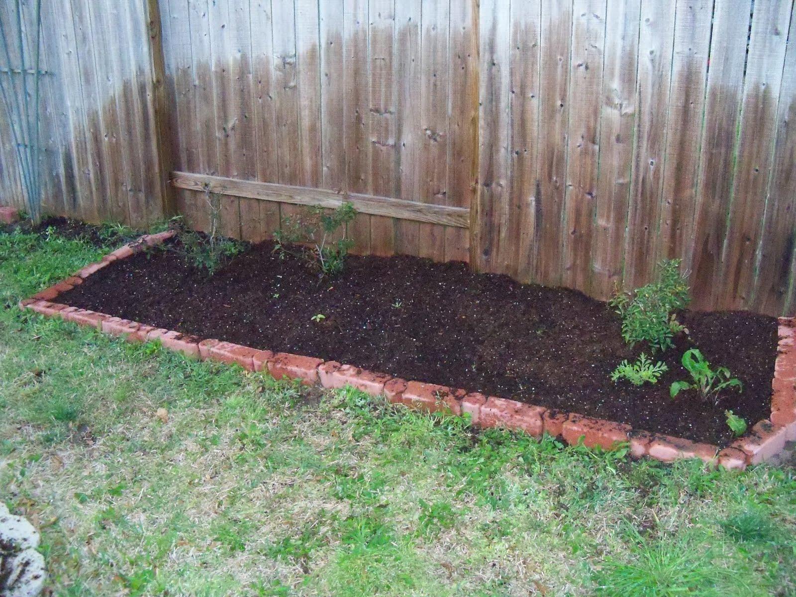 Gardening 2010 - 101_0274.JPG