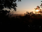 the sun rising from my back yard