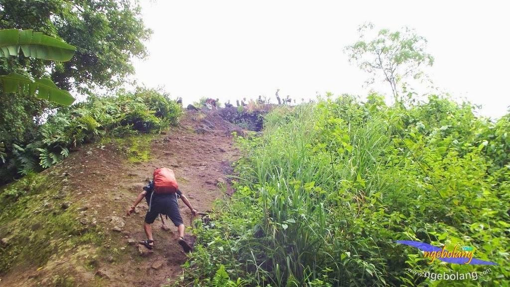 Gunung Munara fuji 8 Maret 2015 43