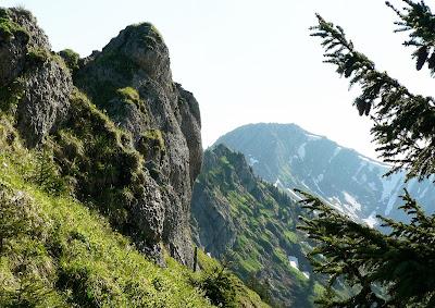 Blick auf den Stuiben vom Steineberg Allgäu