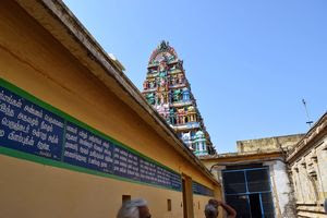 Thiruvavaduthurai Temple Entrance