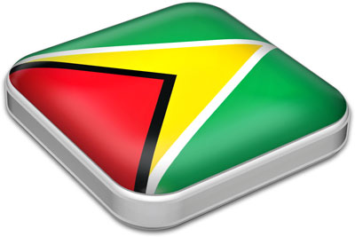 Flag of Guyana with metallic square frame