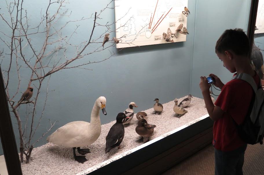 Besonders interessant dürfte das Museum für Kinder sein