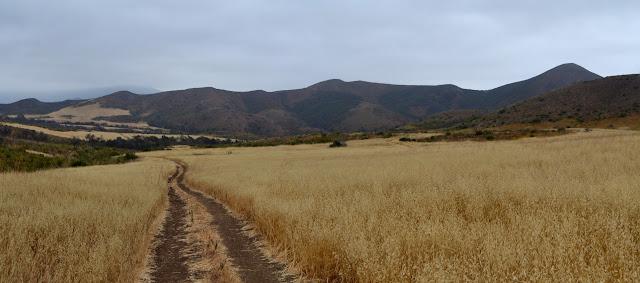 La Jolla Valley
