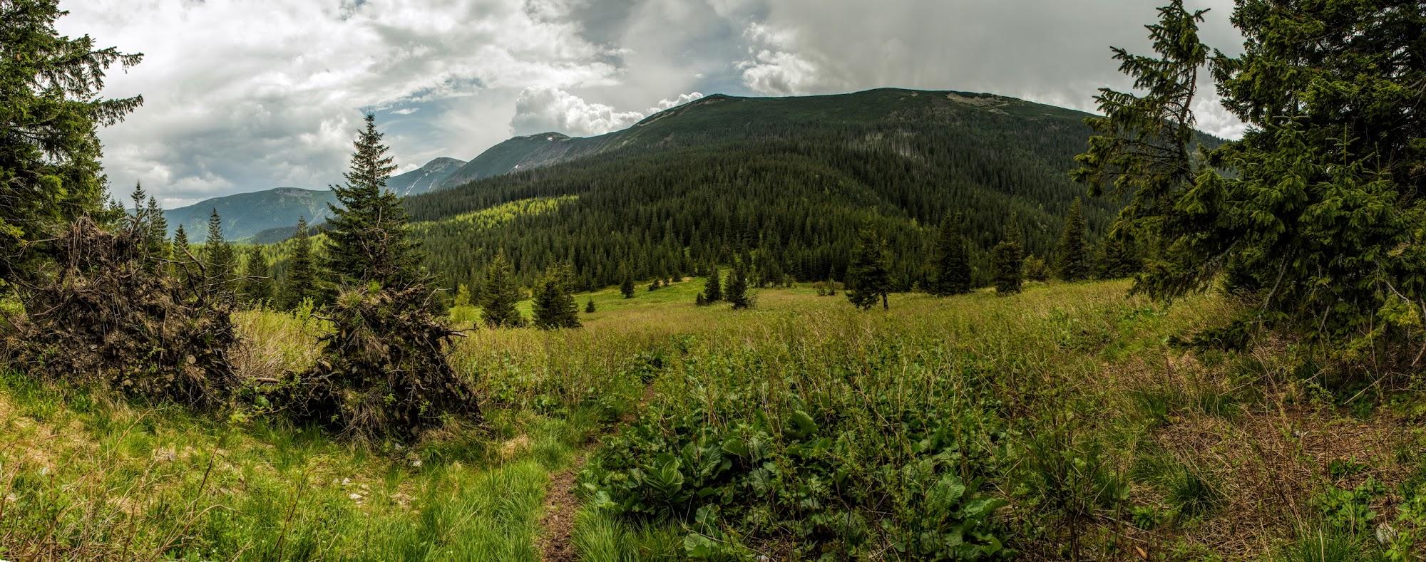 перевал Боревка