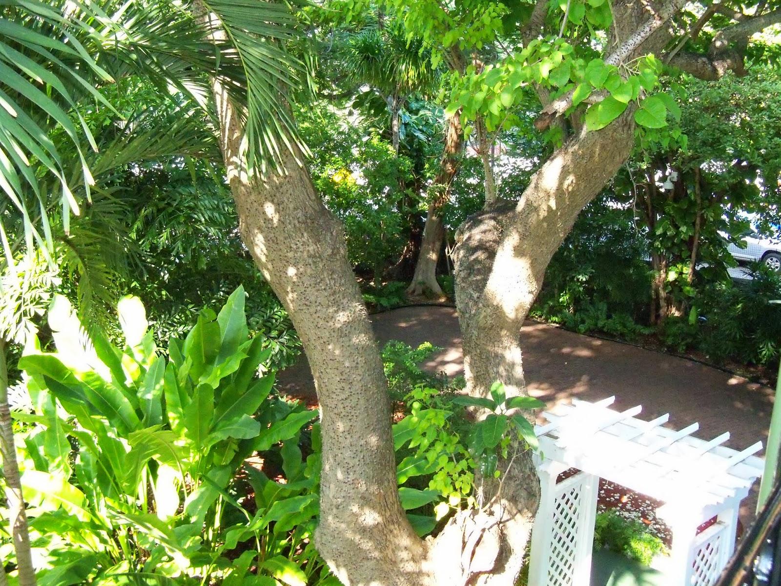 Key West Vacation - 116_5418.JPG