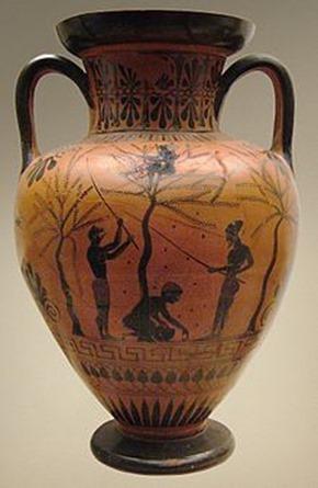 6-Amphora_olive-gathering_BM_B226