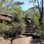 Steps on Tony Doyle Track (218042)