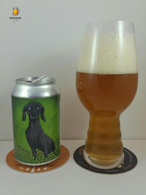 beer Alphabet / La Quince Lunes Verde cervezame