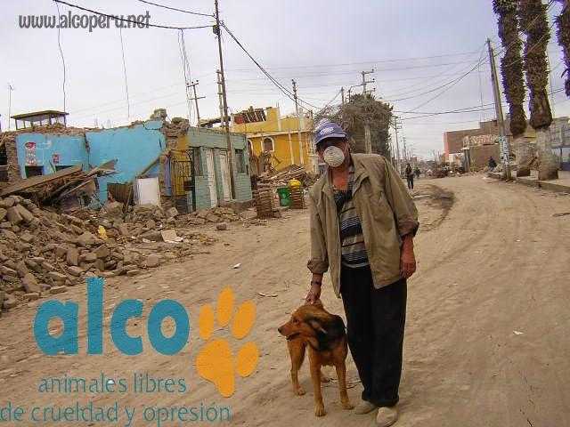 1era visita asistencia animales damnificados terremoto  Pisco 2007 (17)