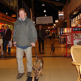 KNON puppys in de stad nov 2008 - DSC09015.JPG