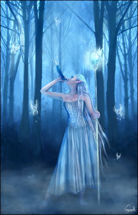 Night Forest Witchcraft, Witchcraft