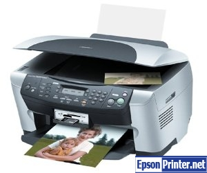 How to reset Epson RX500 printer