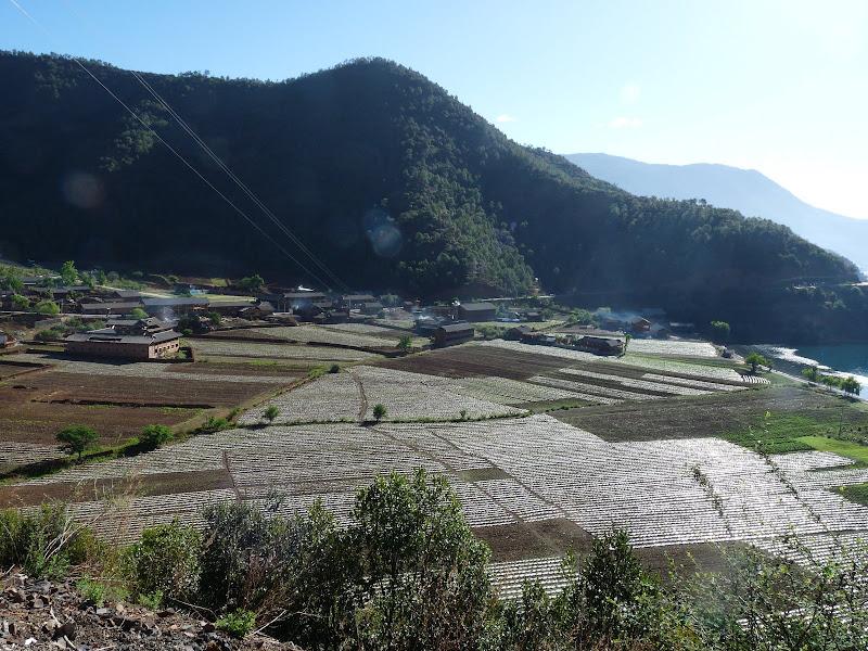 Chine Yunnan Lac LUGU, puis SHA XI - P1240081.JPG