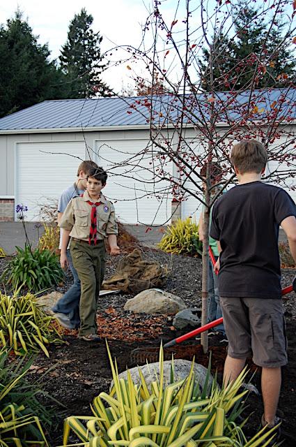 Tree Planting November 2010 - DSC_4552.JPG