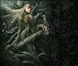 Spider Goddess