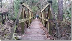 Bridge-10