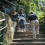 steep stairways to Elephant Mountain in Taipei, T'ai-pei county, Taiwan